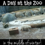 A Day at the Zoo in the middle of Winter!